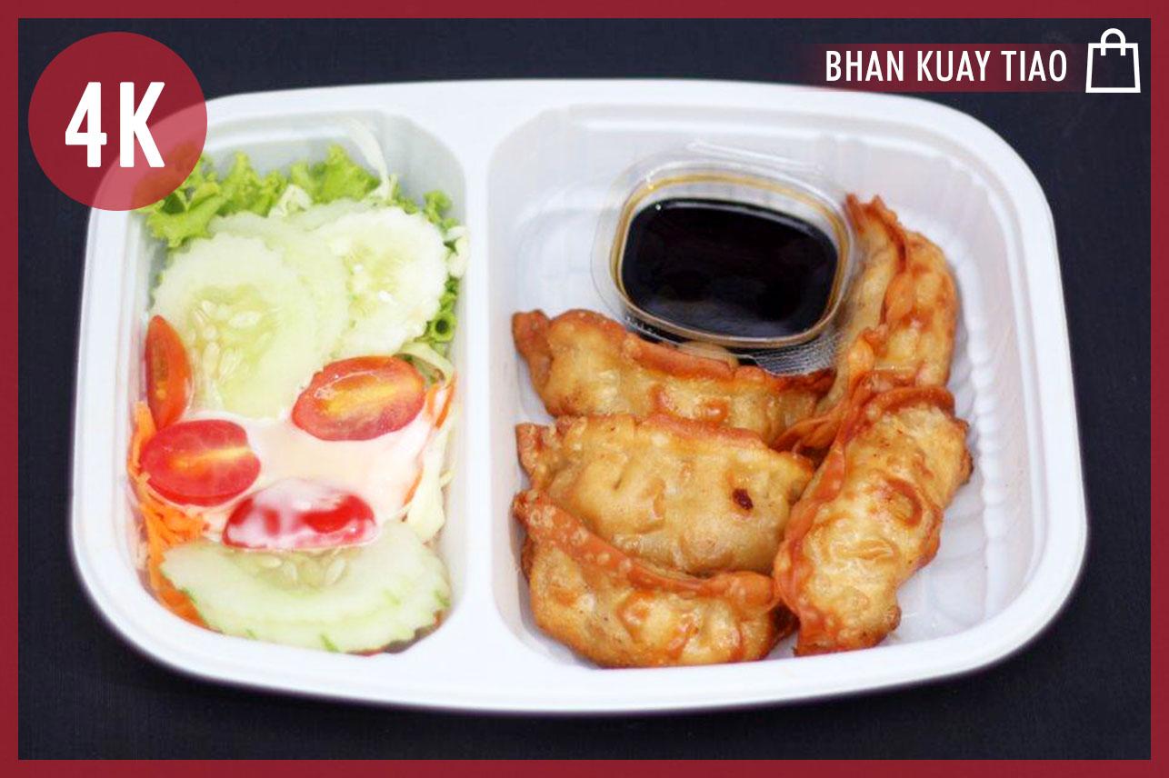 Pork Gyoza & Salad